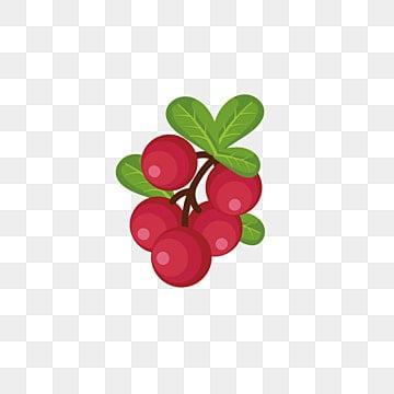 水果水果剪贴画 水果 芒果png图片和剪贴画