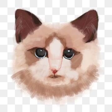 可爱的小动物 水彩猫 动物猫 可爱的小猫 动物猫 可爱的猫咪 小猫咪头