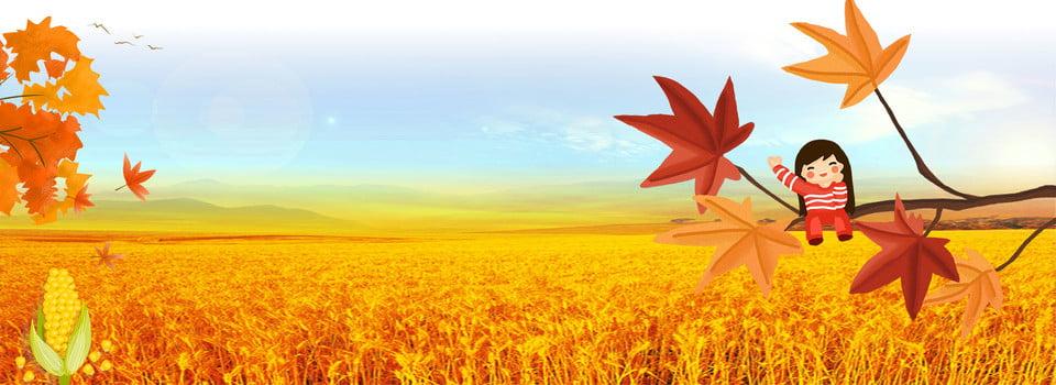 秋分时节背景图片 秋分 创意合成 秋天 丰收 玉米田 二, 背景图