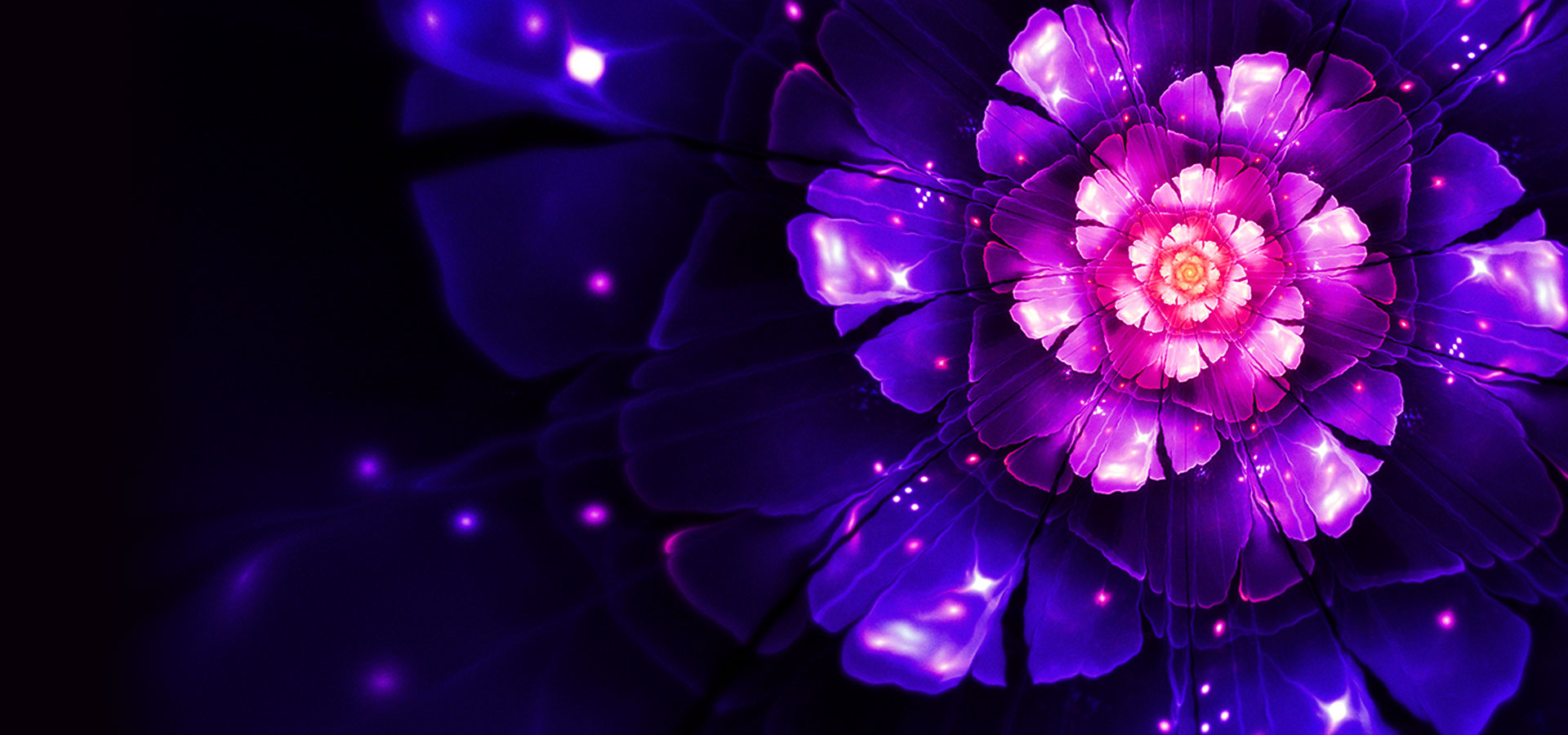 Cool Flower Background Image, Flower, Bright, Cool
