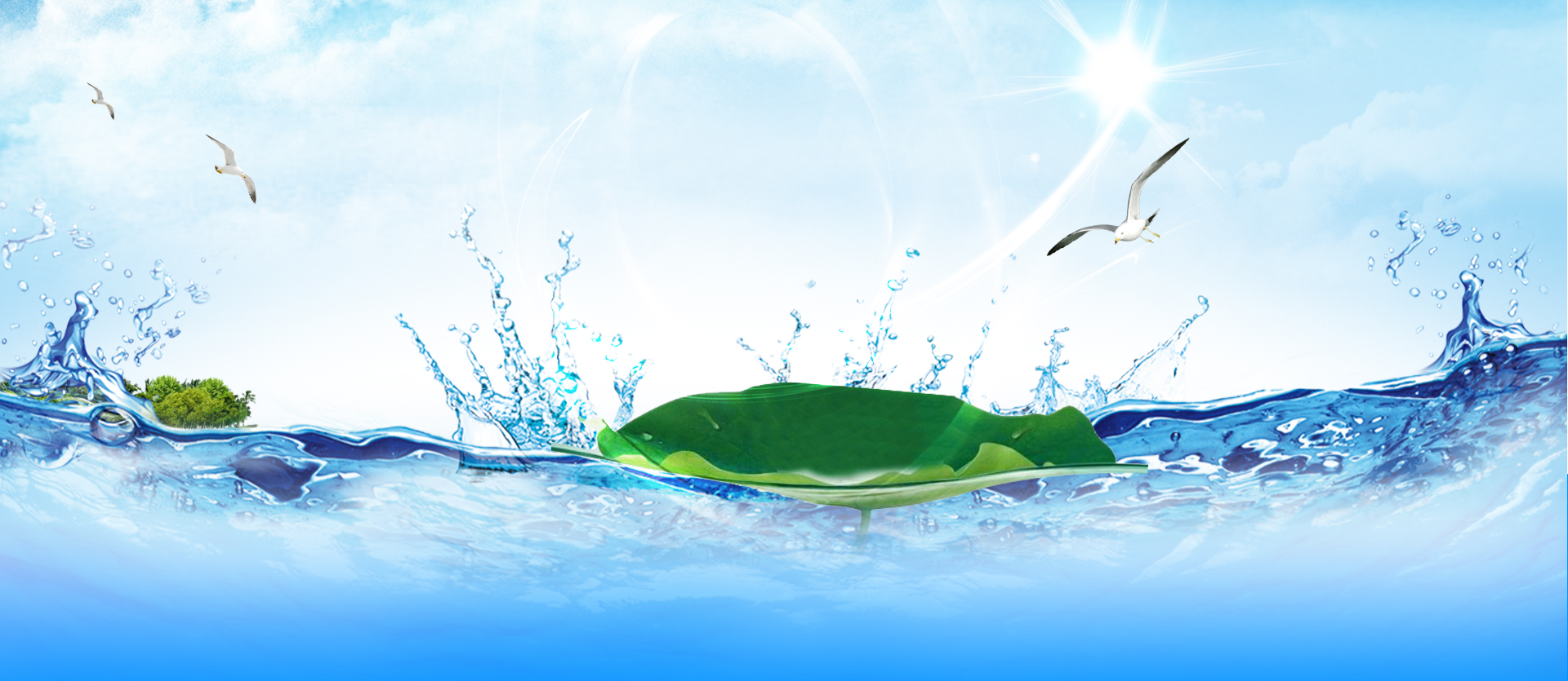 seagull water background banner lotus leaf  seagull  water