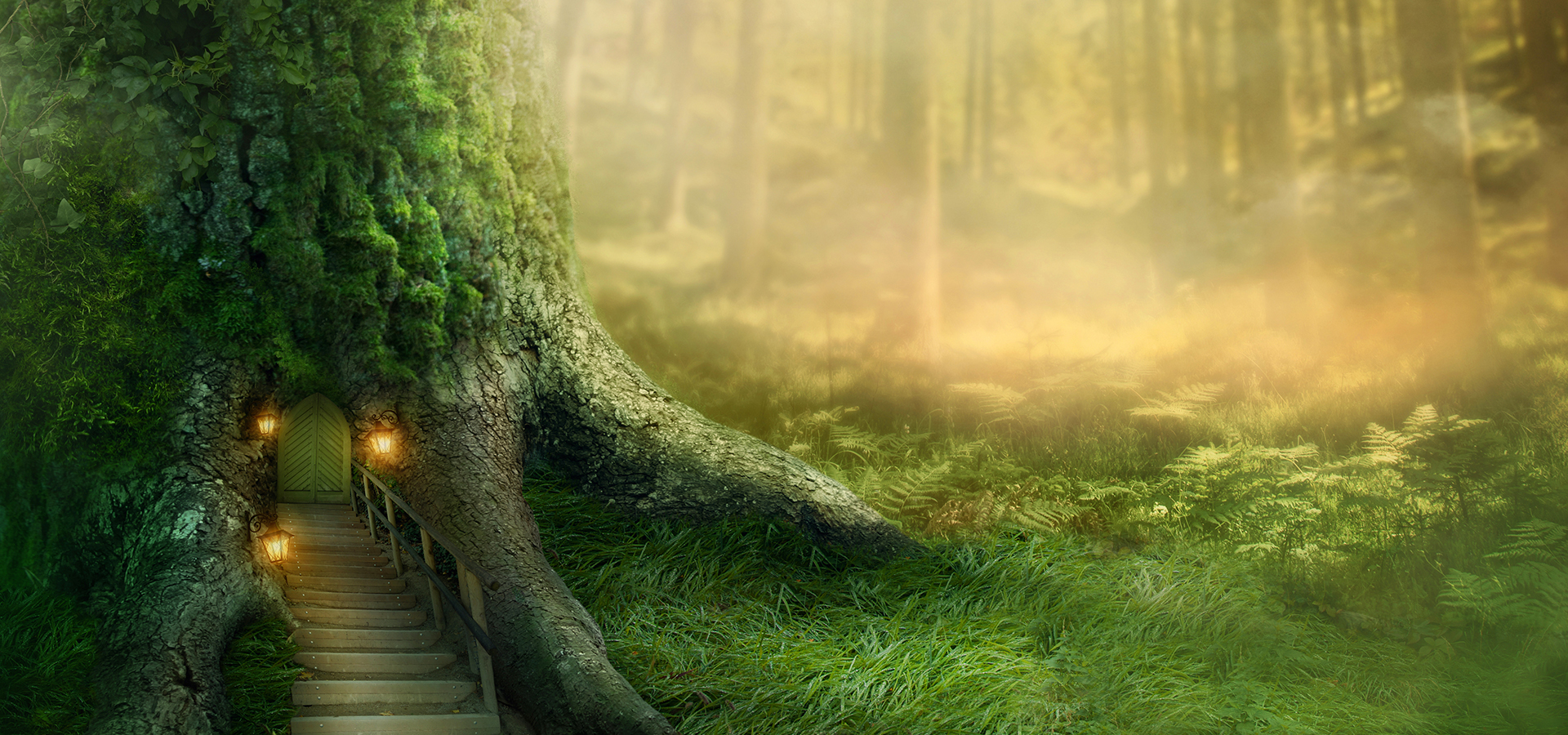 Fairy Forest, Fairy, Forest, Dream Background Image for ...