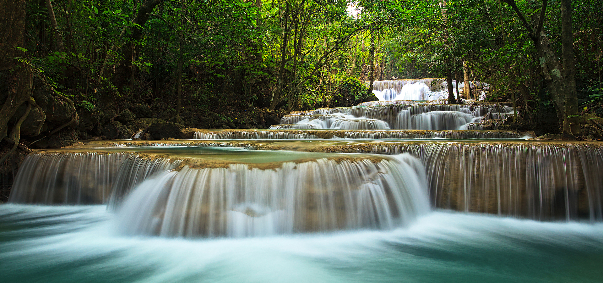 forest stream waterfall scenery background  forest  stream  waterfall background image for free