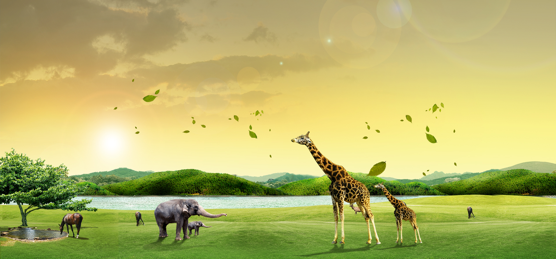 zoo posters  animals  water  trees background image for free download