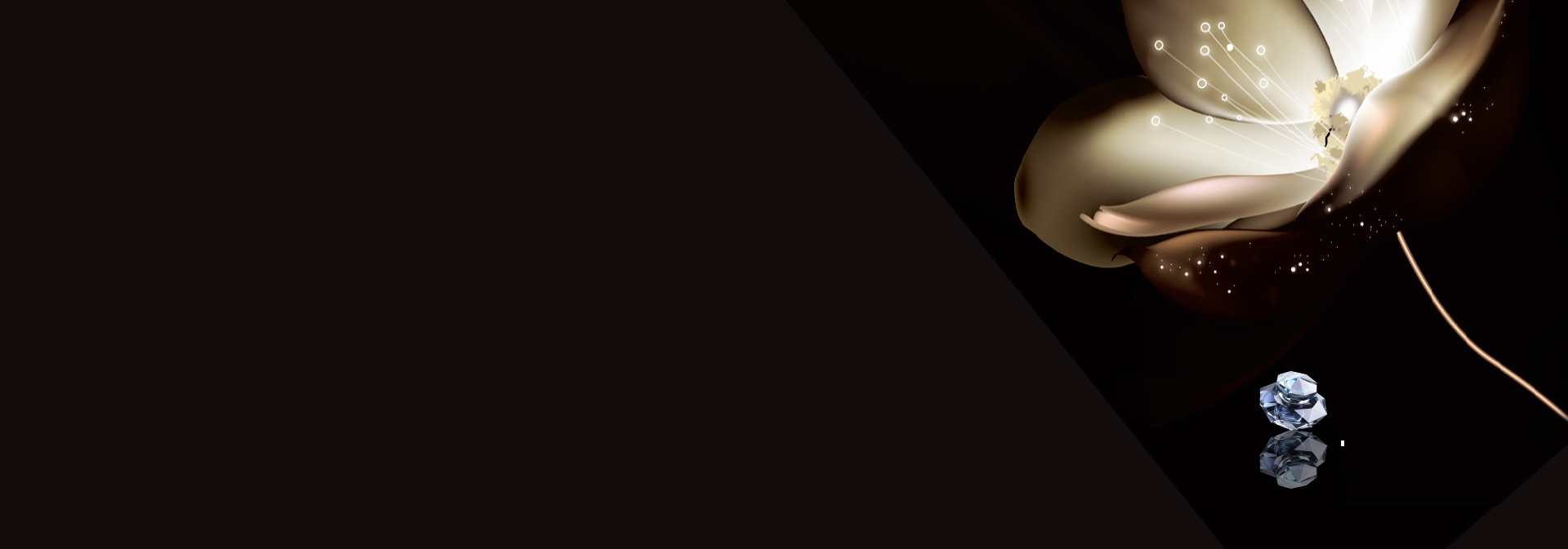 Atmospheric Luxury Jewelry Background Banner Business Card ...