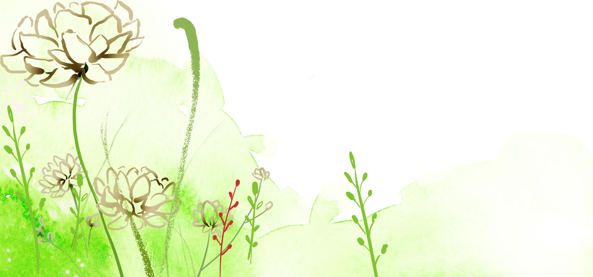 vert de fond de lotus d u00e9partement de la couleur de la