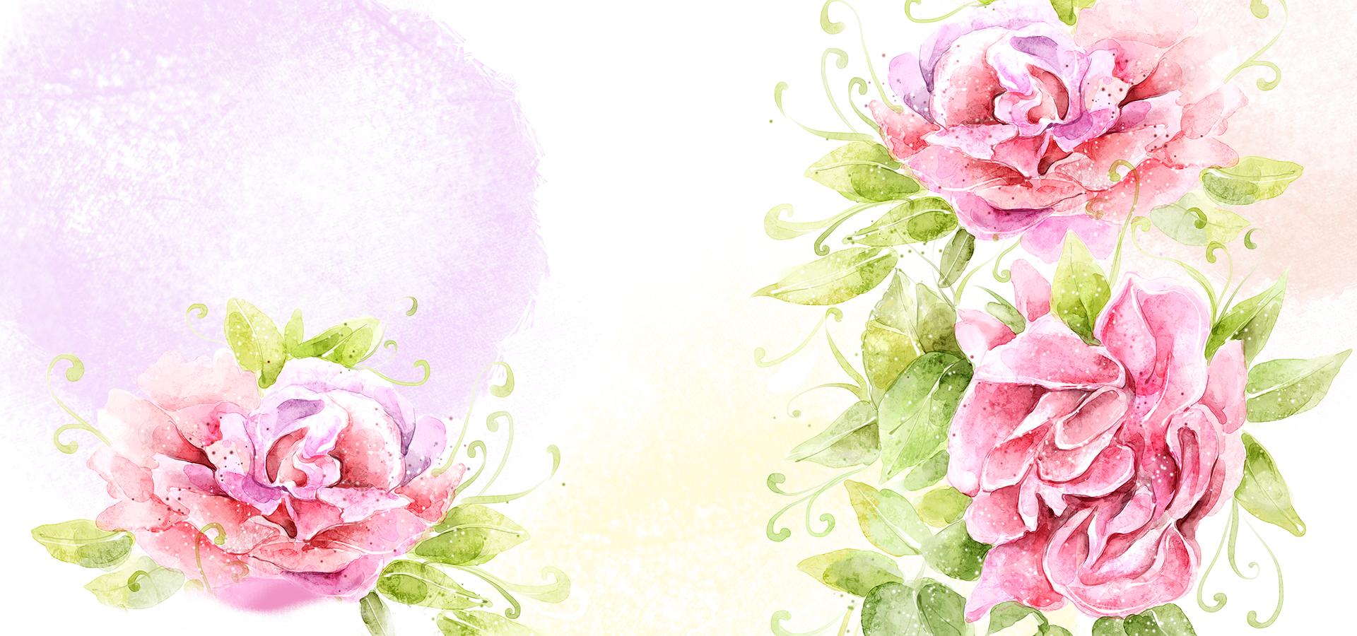 fleur de fond rose  illustration  des fleurs roses  fleur