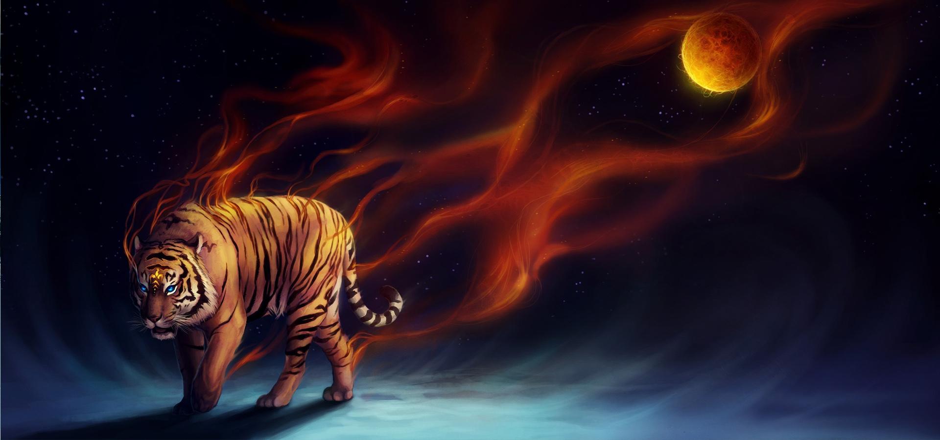 Tiger Background, Flame, Tiger, Poster Background Image ...