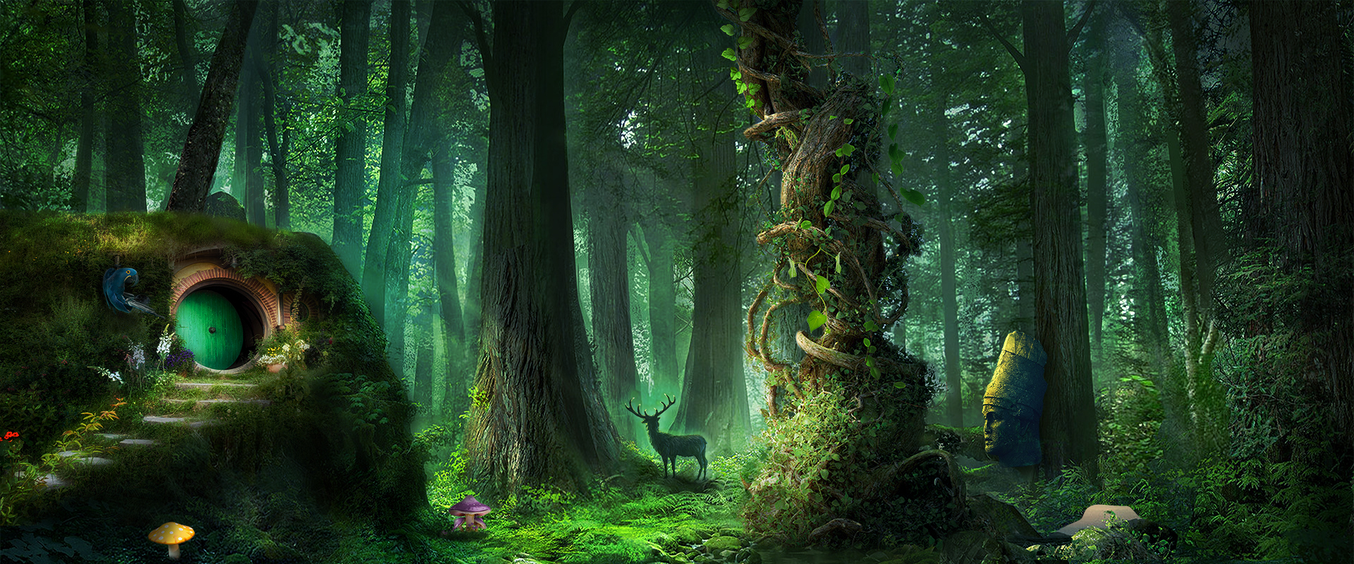 fantasy forest background  dream  forest  cave background