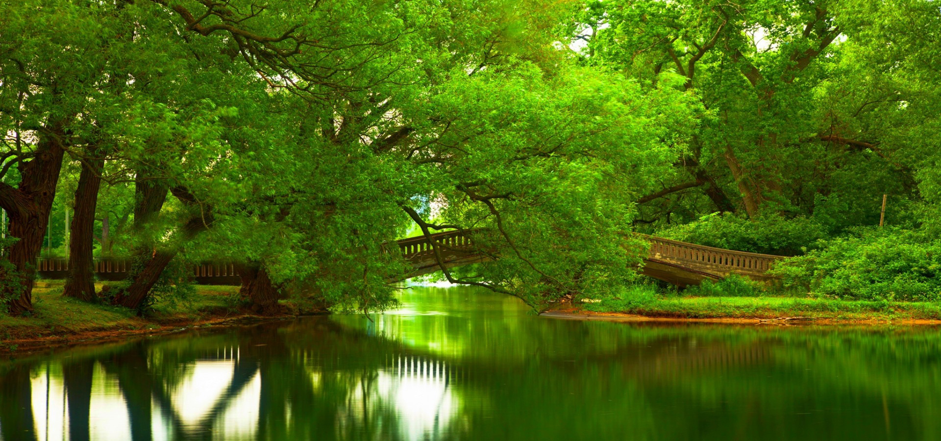 greenery bridges  greenery  landscape  bridges background