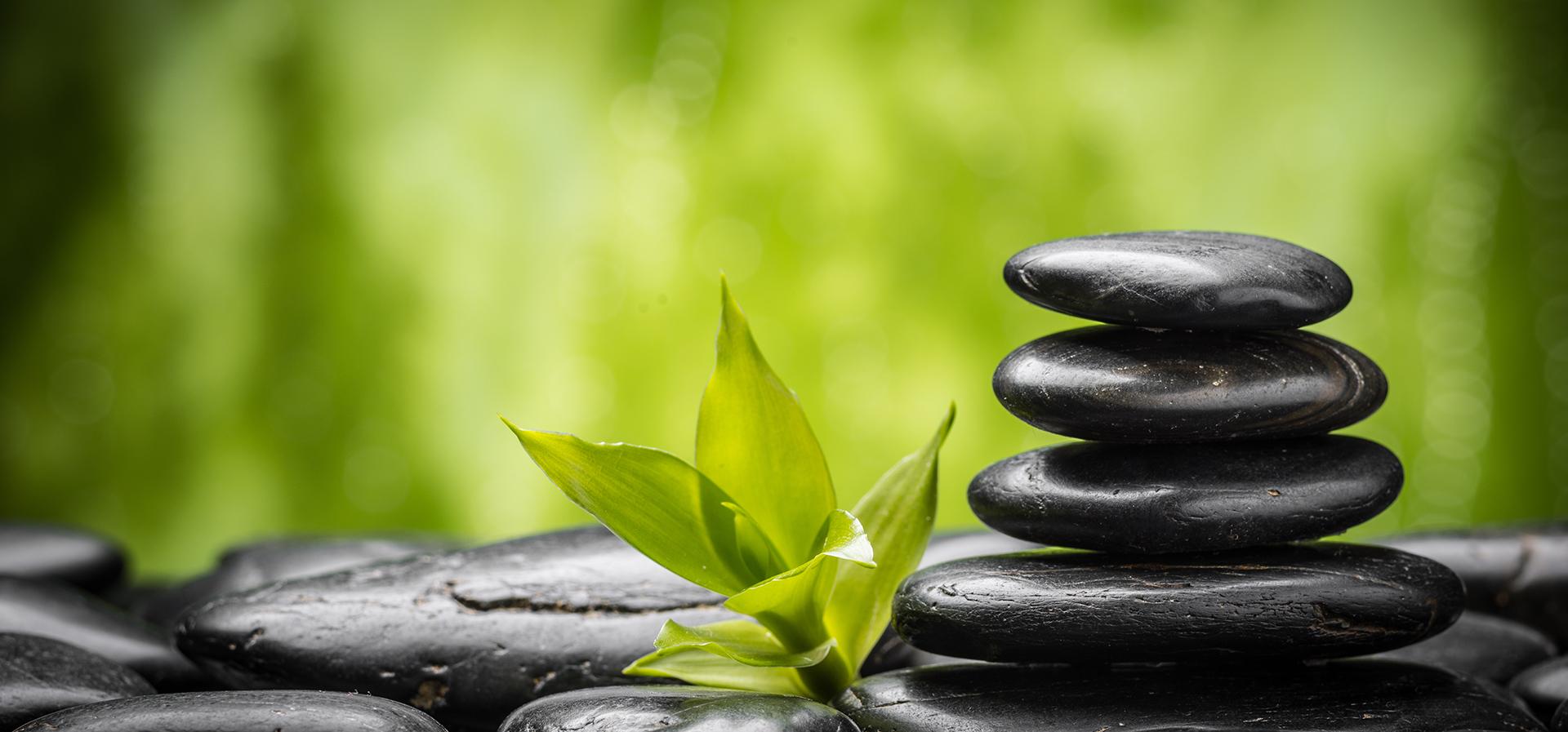 le bambou spa pierre caillou contexte balance la th u00e9rapie