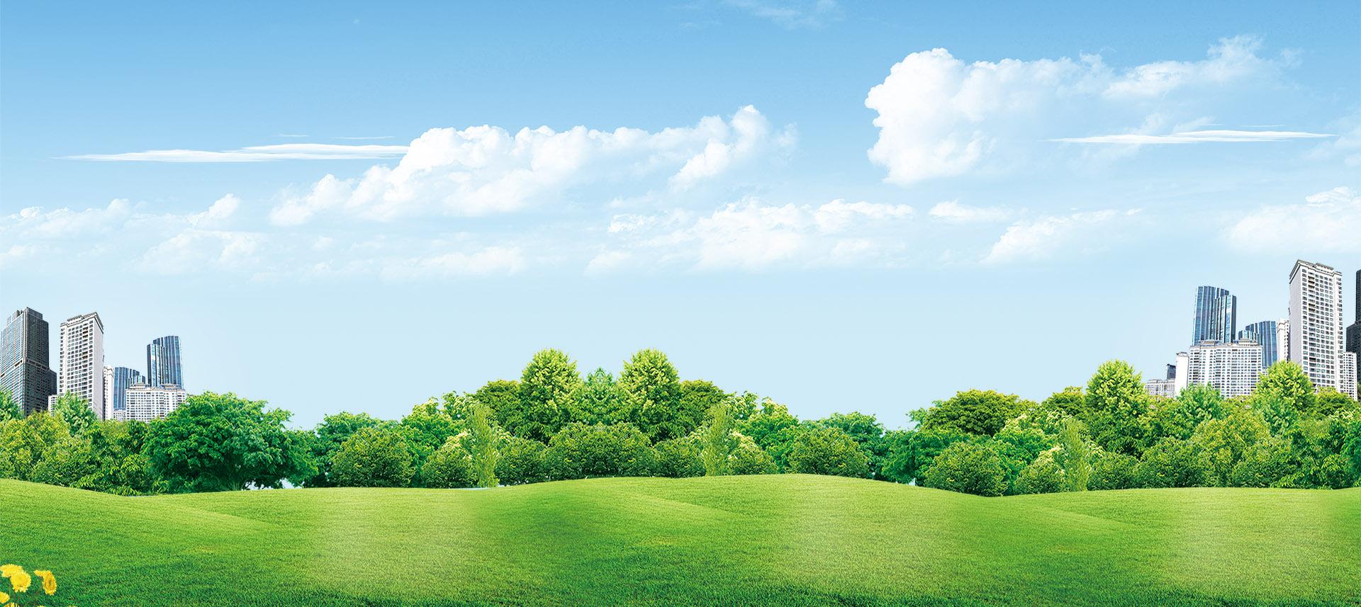 de l herbe de gazon vert pelouse prairies image de fond