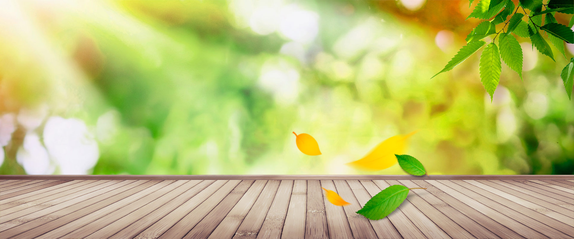 Green Leaves Wood Background, Fresh, Literature And Art