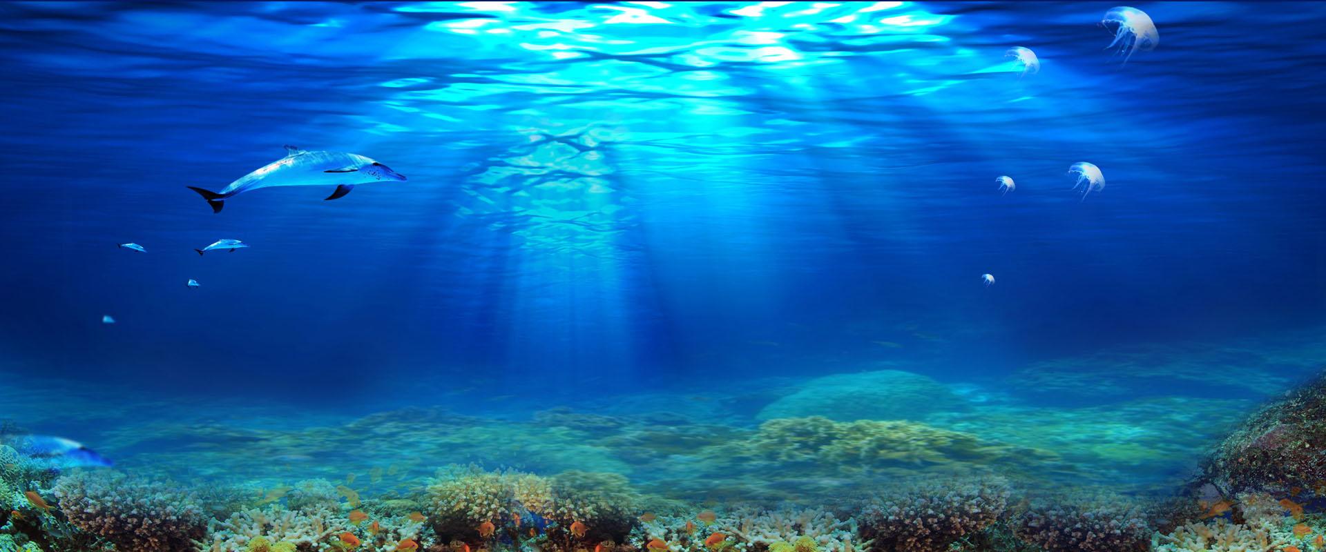 mer ocean de l u0026 39 eau sun contexte aquarium plage le paysage
