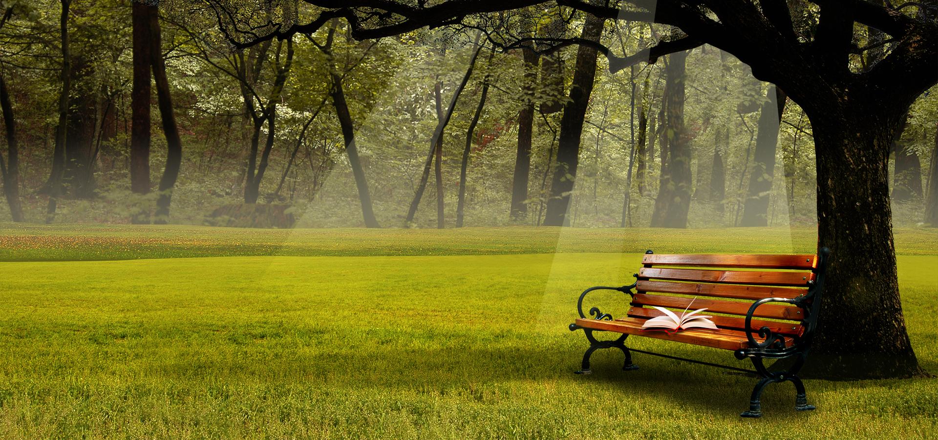 park bench bench asiento muebles antecedentes campo rural