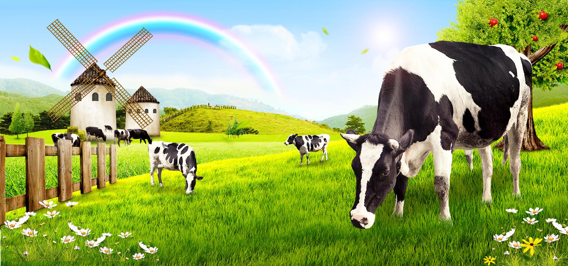 Green Grass Prairie Rainbow Apple Cows Windmills River