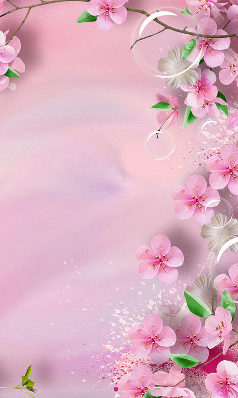 rose romantique de p u00eache de fond romantique rose fleur de