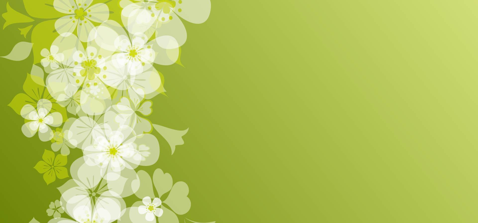 floral section conception fleur contexte sch u00e9ma d u00e9coration