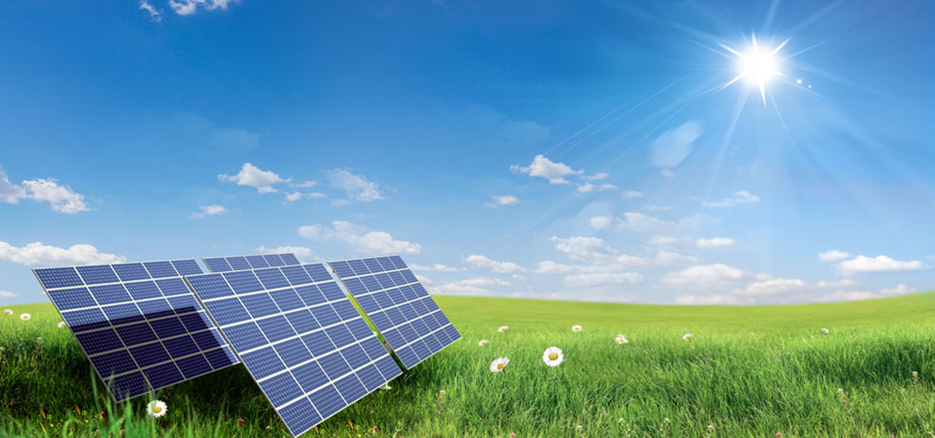 Solar Panel On The Green Grass Energy Saving Green