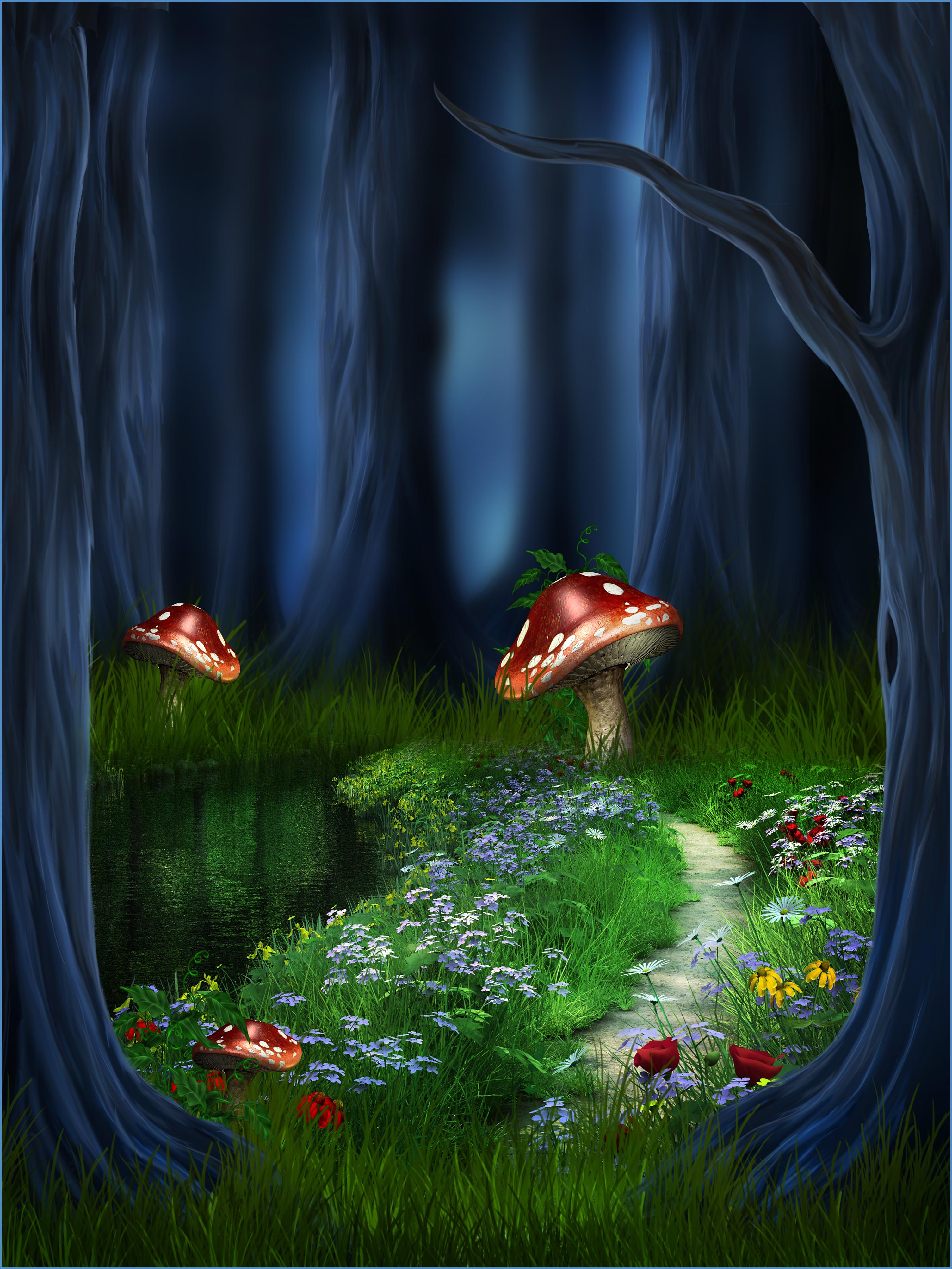 magic forest mushroom fairy background  magic  forest