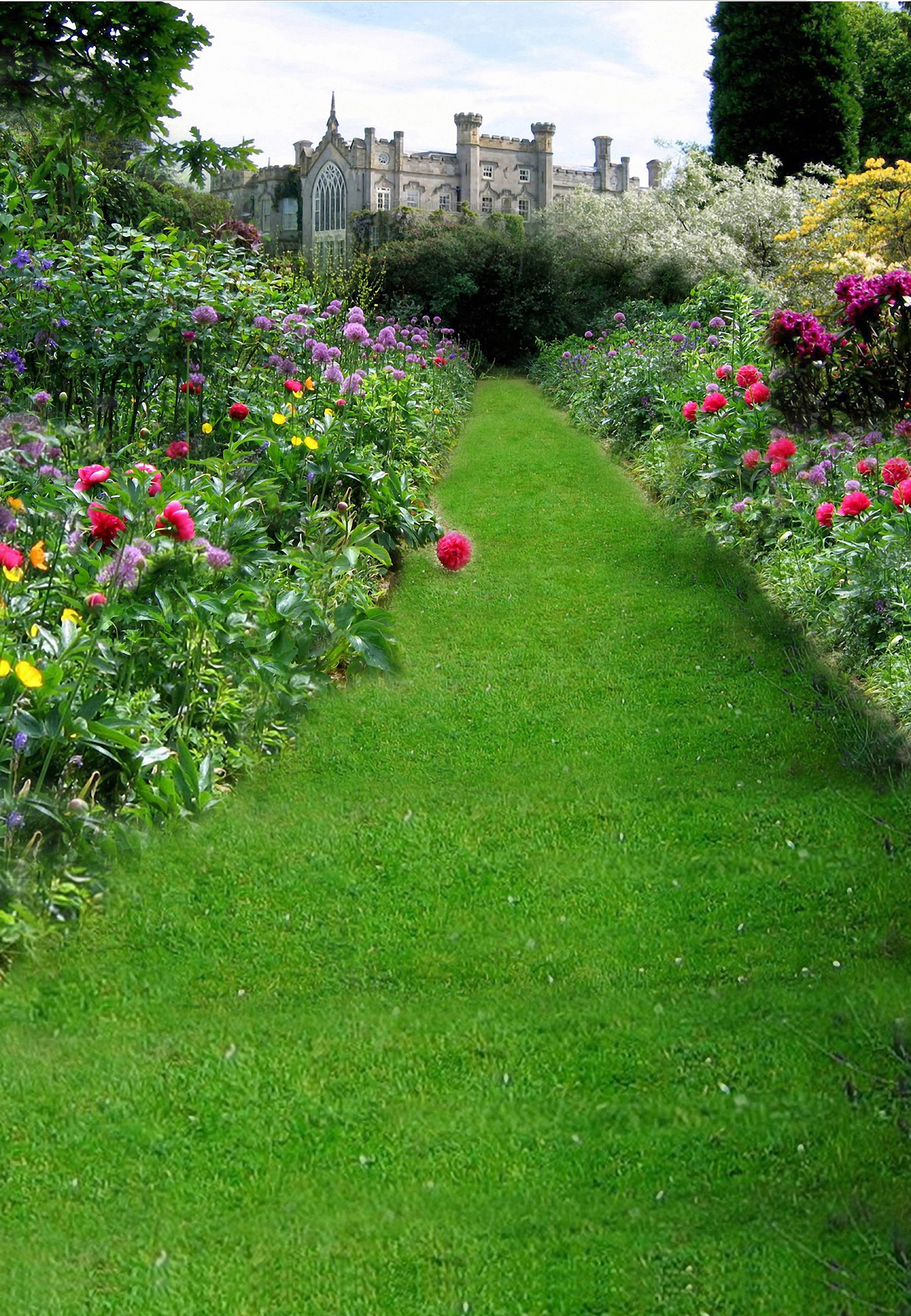 jardin flores planta grass antecedentes park flor verano