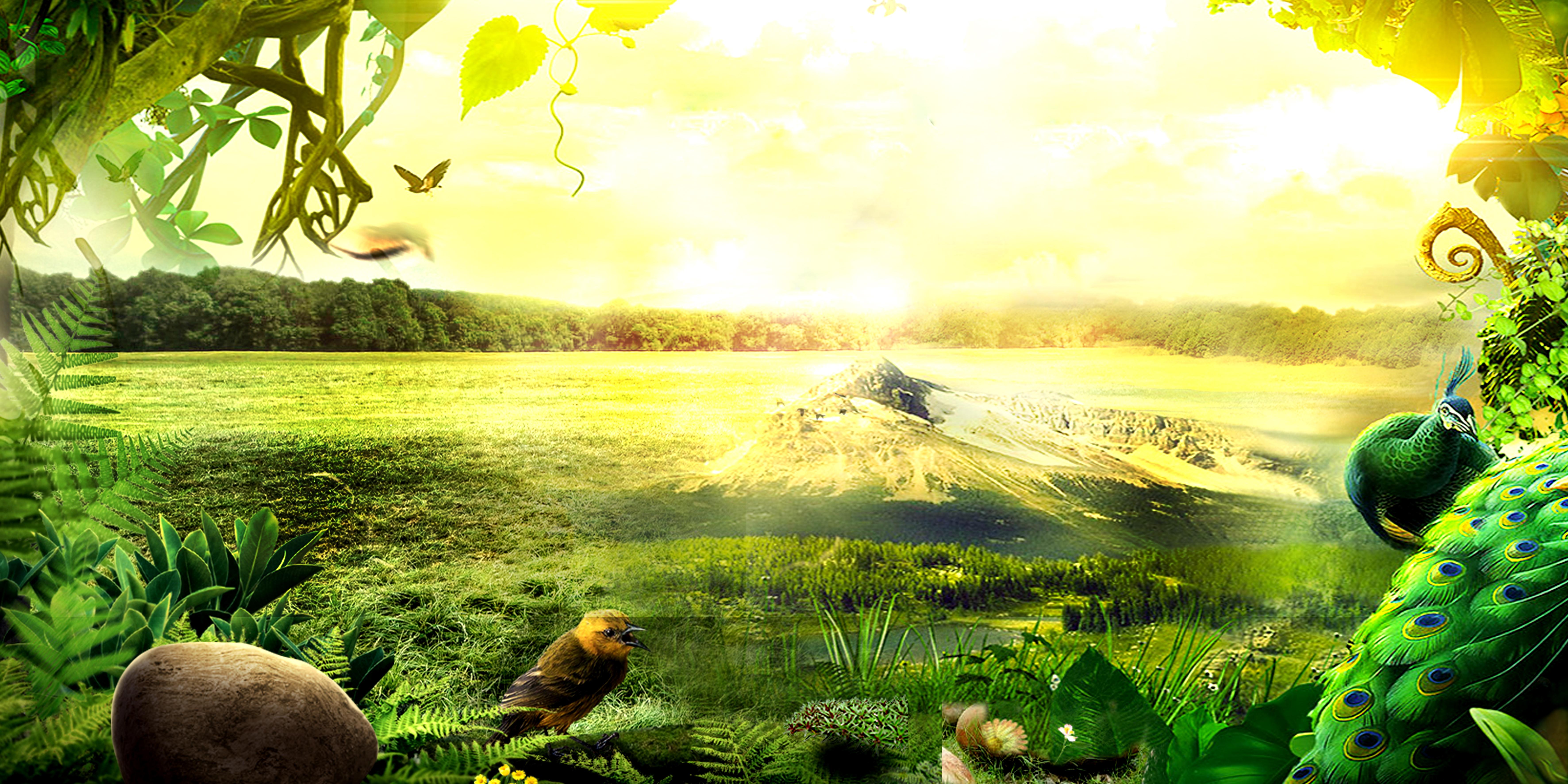 le paysage domaine meadow rural contexte sky l u0026 39 agriculture
