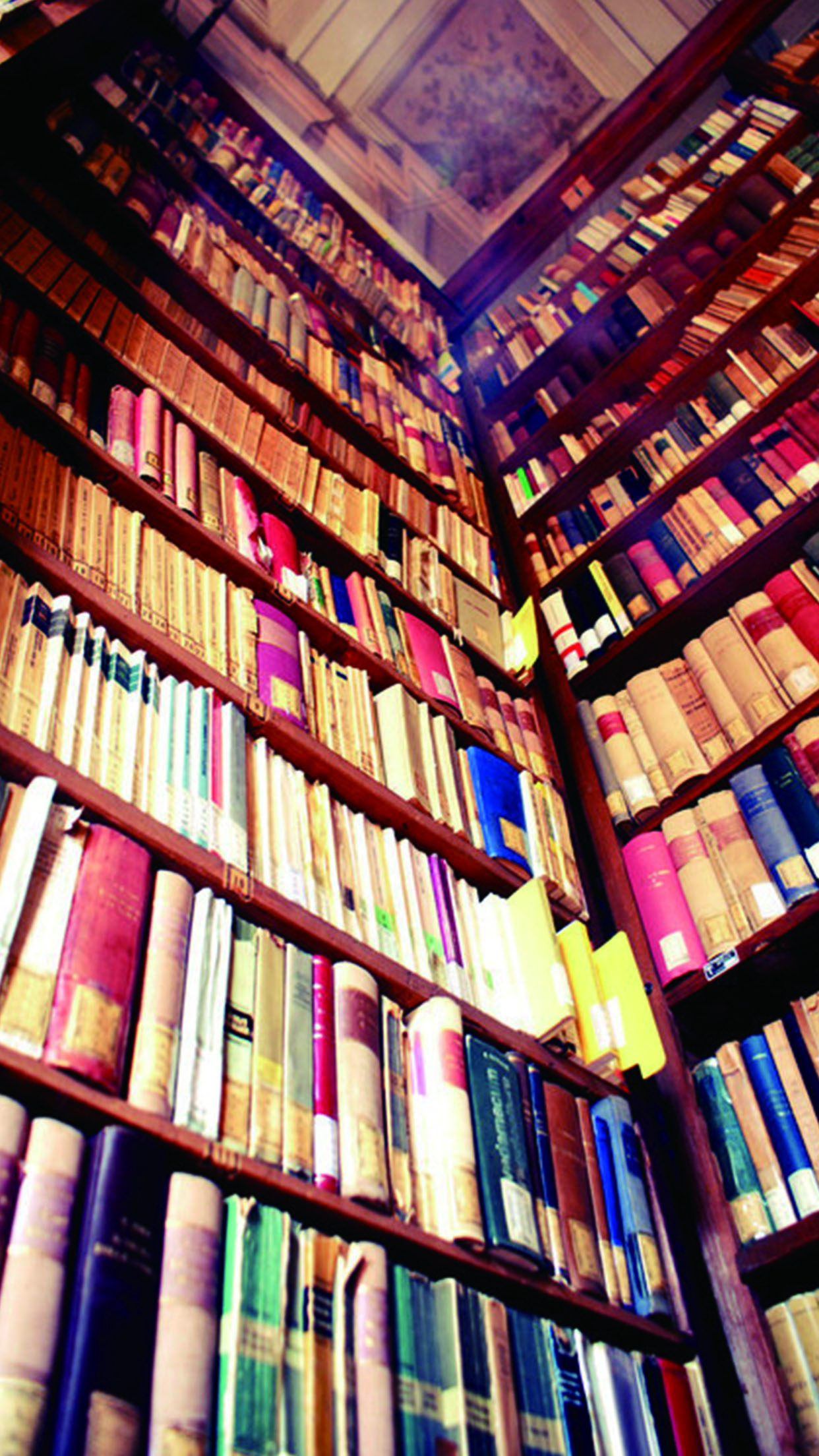 ebf4d4a6212e4 Libro de la biblioteca librería tienda de fondo Establecimiento Mercantil Edificio  Estanteria Imagen de fondo para descarga gratuita