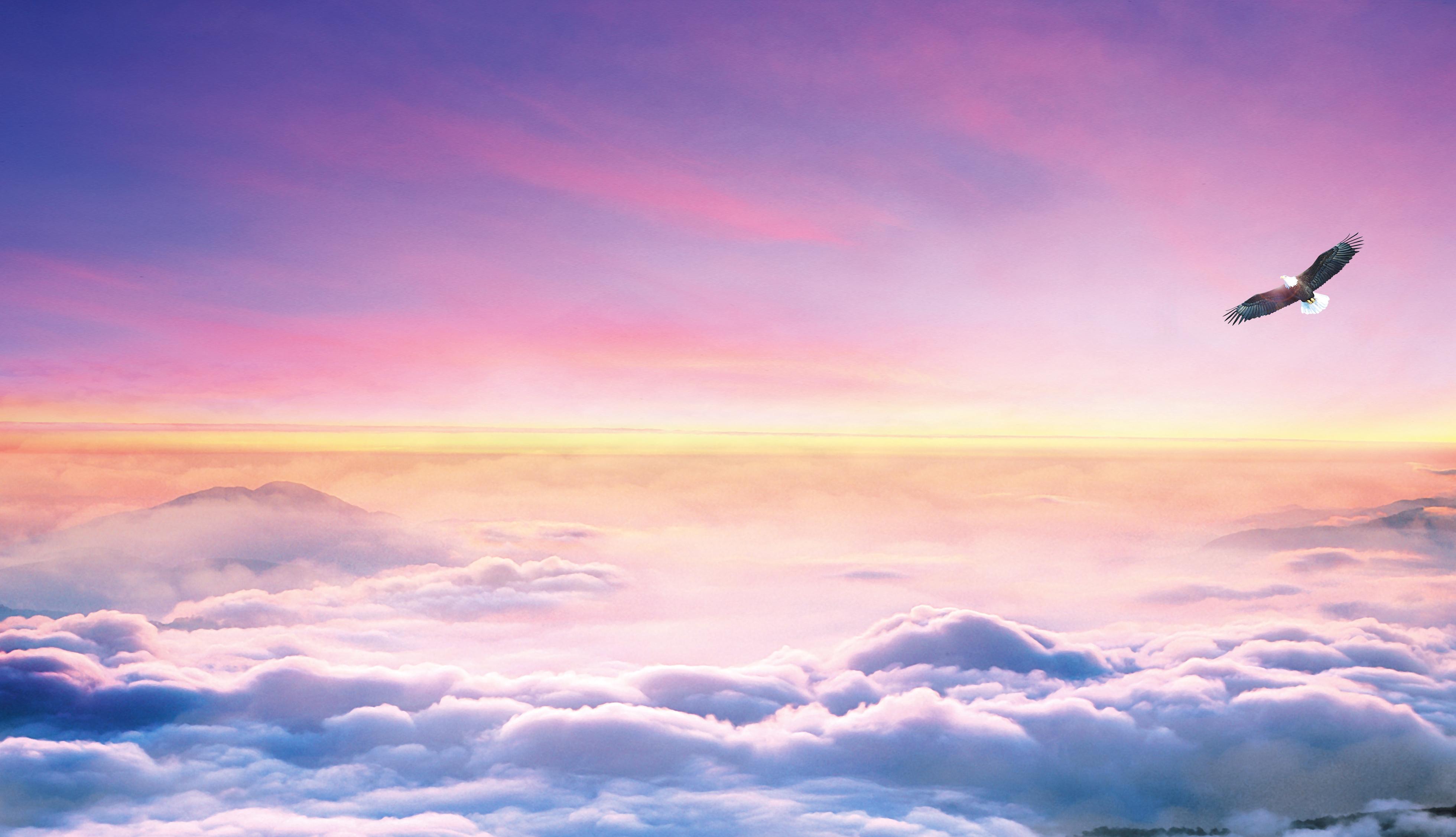 l aigle fond de ciel le ciel aigle lever de soleil image de fond pour le t u00e9l u00e9chargement gratuit