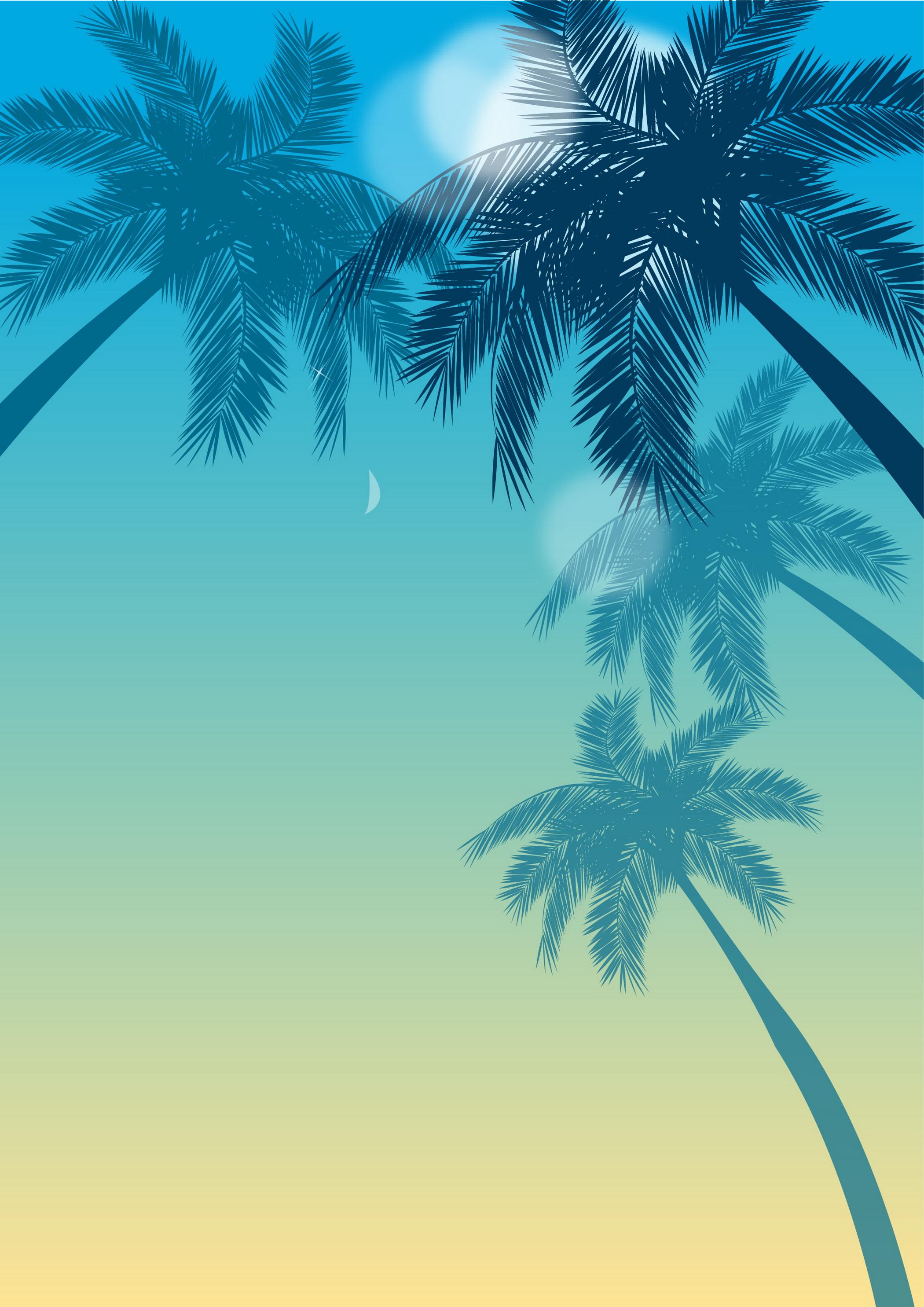 seascape tree palm tropical antecedentes planta verano