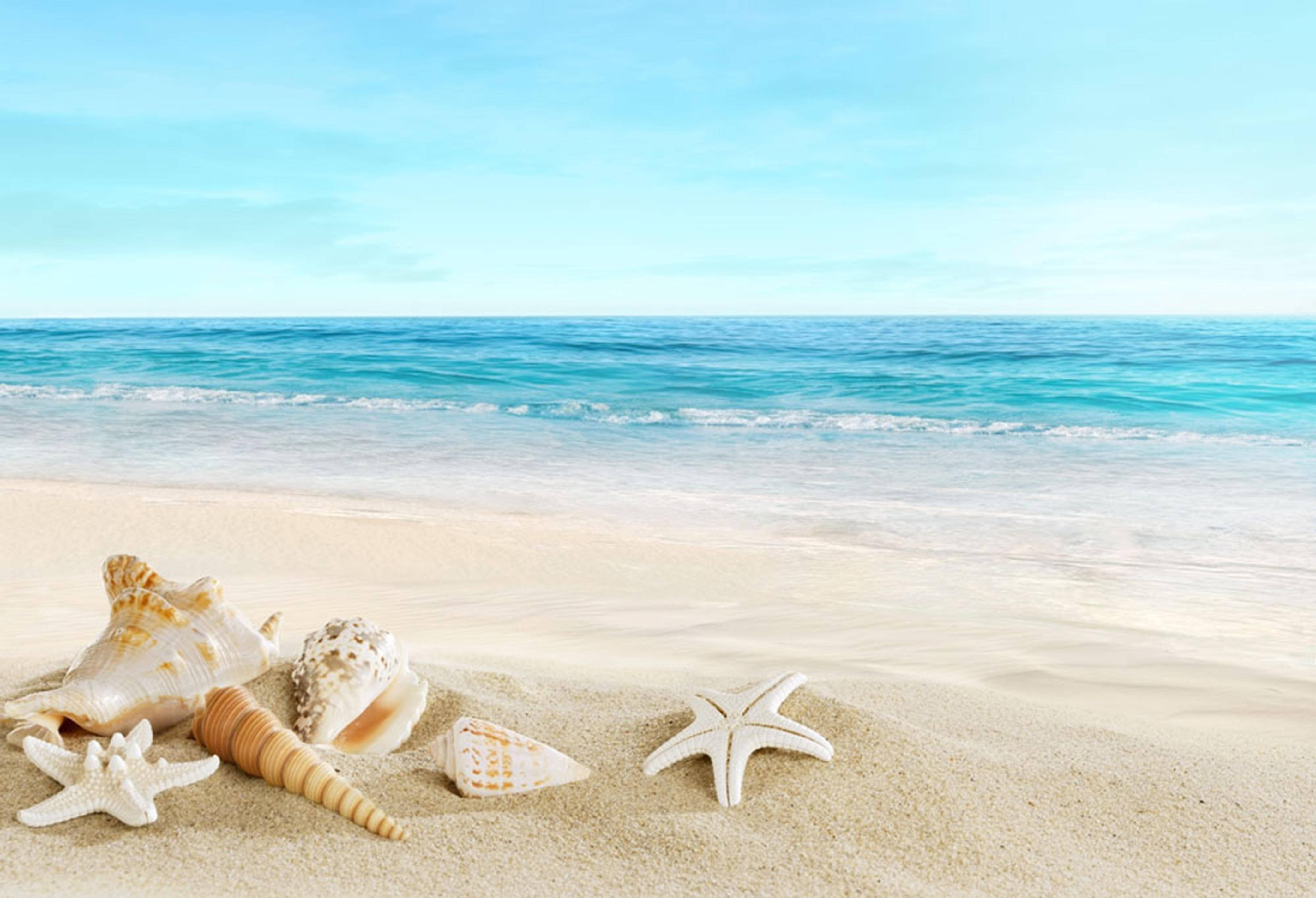 le sable plage ocean mer contexte le sol de l u0026 39 eau tropical image de fond pour le t u00e9l u00e9chargement