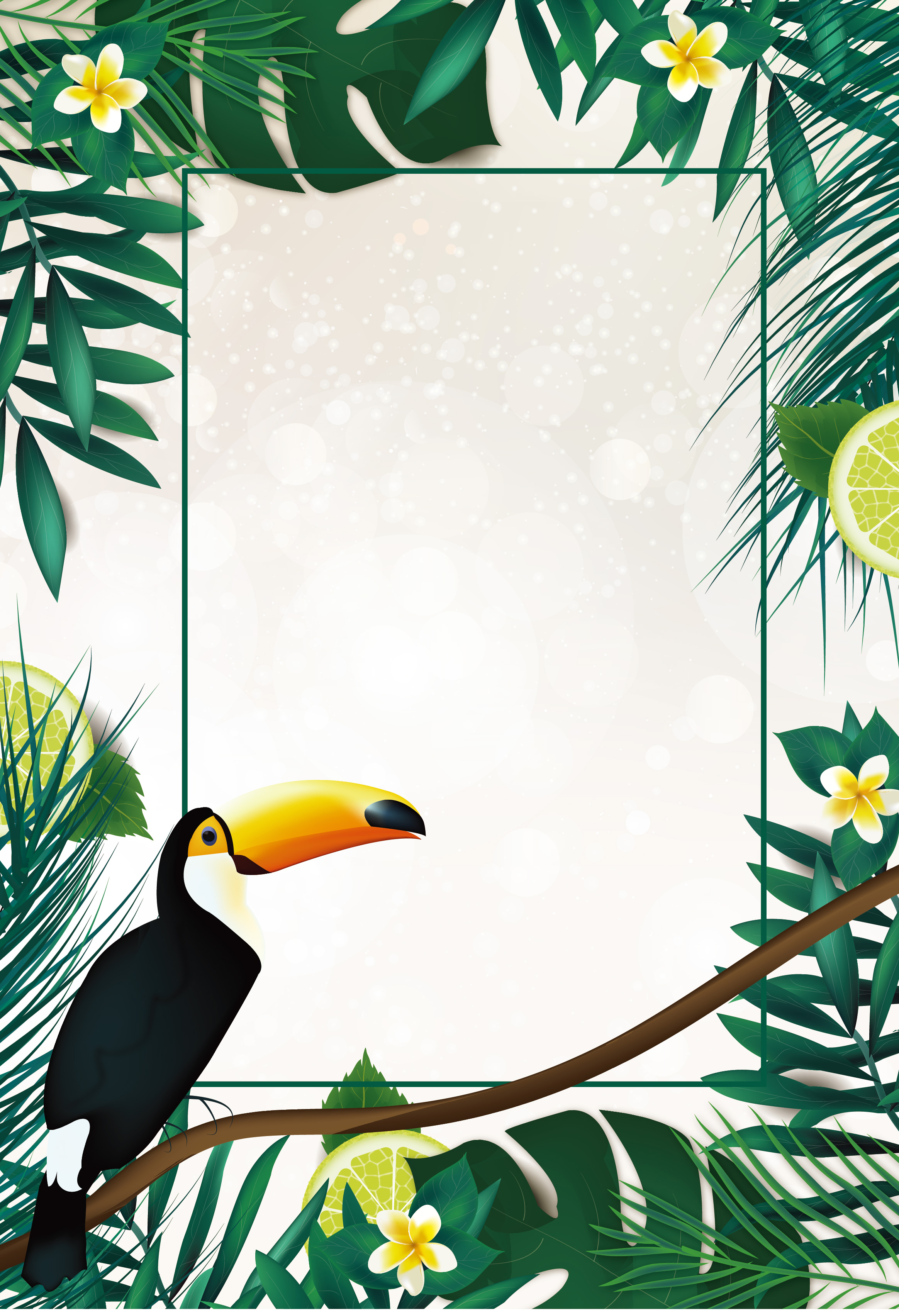 toucan bird pico wildlife background tropical pluma wild