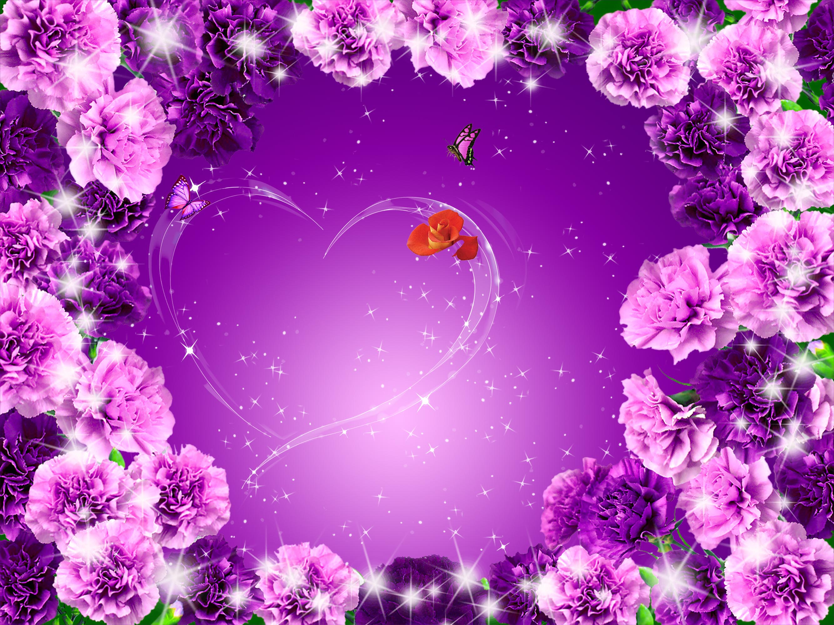 Purple Roses Background Images: Posters Purple Flowers Background Material, Mothers Day