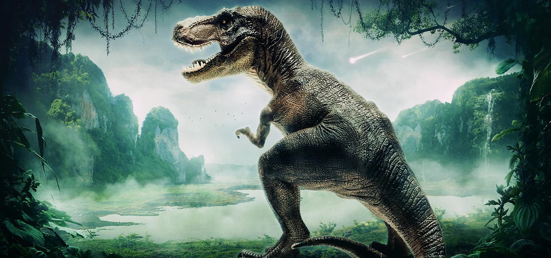 l u00e9zard dinosaure de la faune wild contexte zoo de l u0026 39 eau
