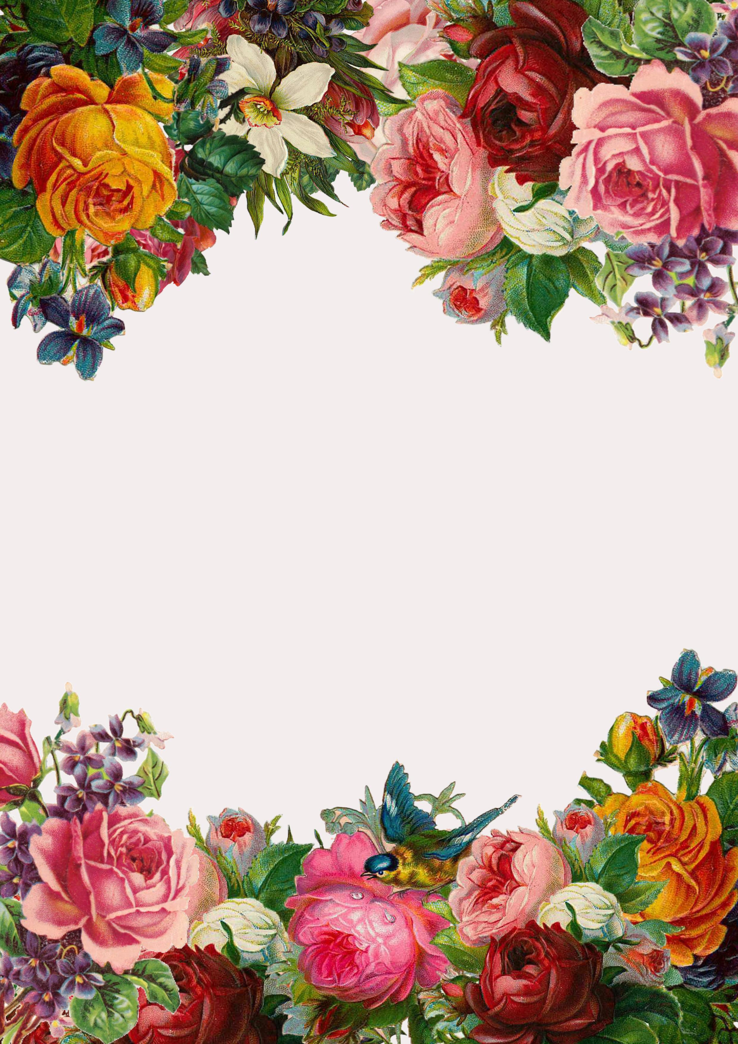 l art de fleurs sur mat u00e9riau de fond de la bordure inf u00e9rieure  fleur  rose  trame image de fond