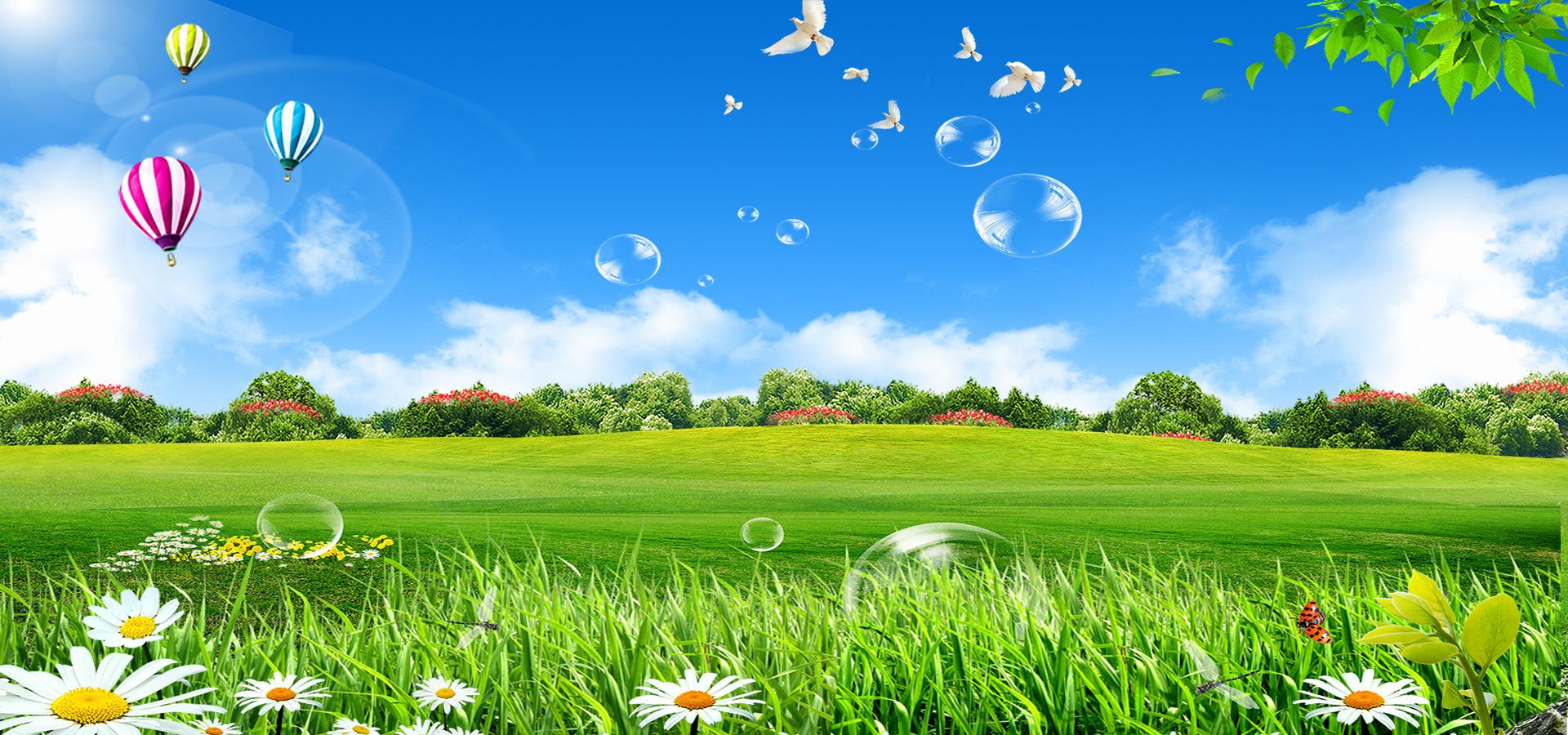 le bl u00e9 c u00e9r u00e9ales domaine meadow contexte de l u0026 39 herbe le