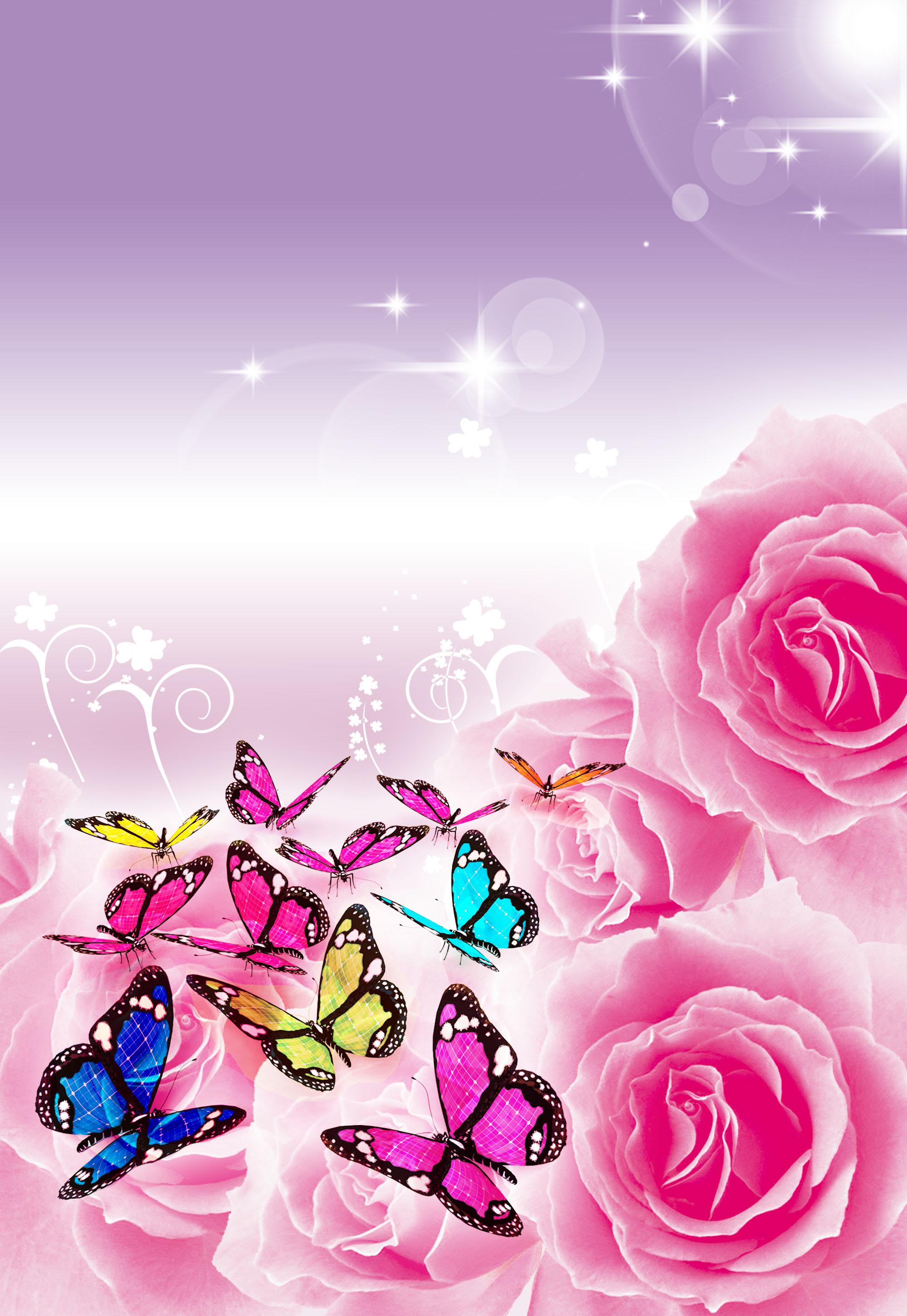 papillon rose romantique de fond rose rose romantique