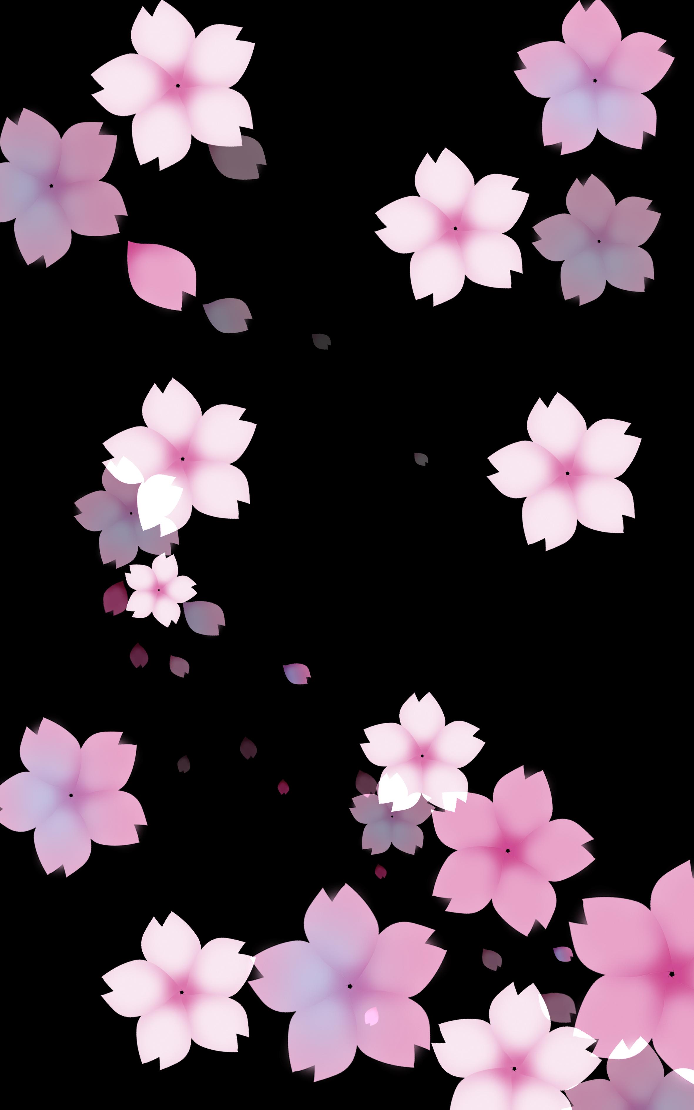 aesthetic background black cherry  black  beautiful
