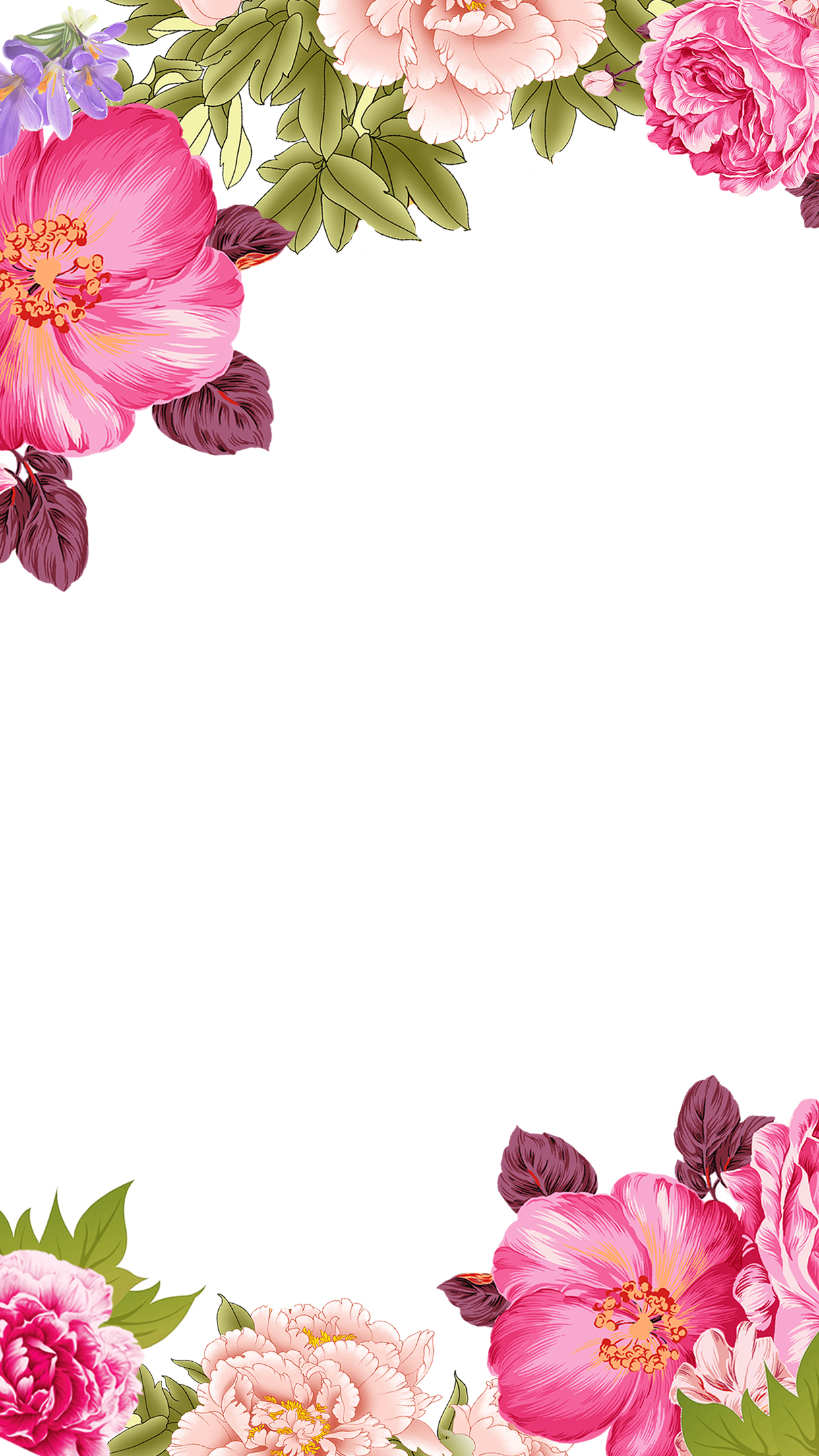 Mo Flowers Flowers Decorative Borders H5 Background Free