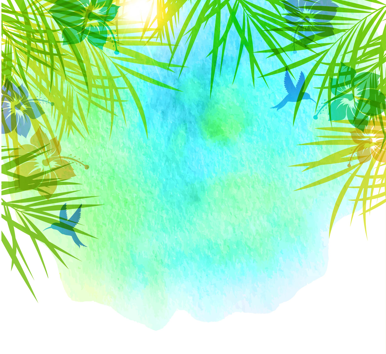 summer eau de fond en mati u00e8re de vecteur  arri u00e8re plan  l  u00e9t u00e9  des plantes image de fond pour le