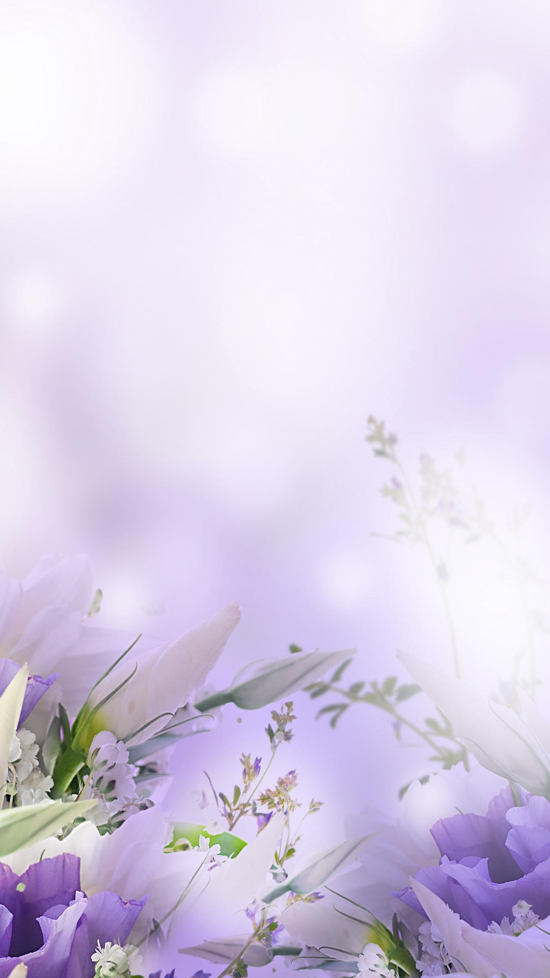 plant flower dandelion pollen background  pink  herb