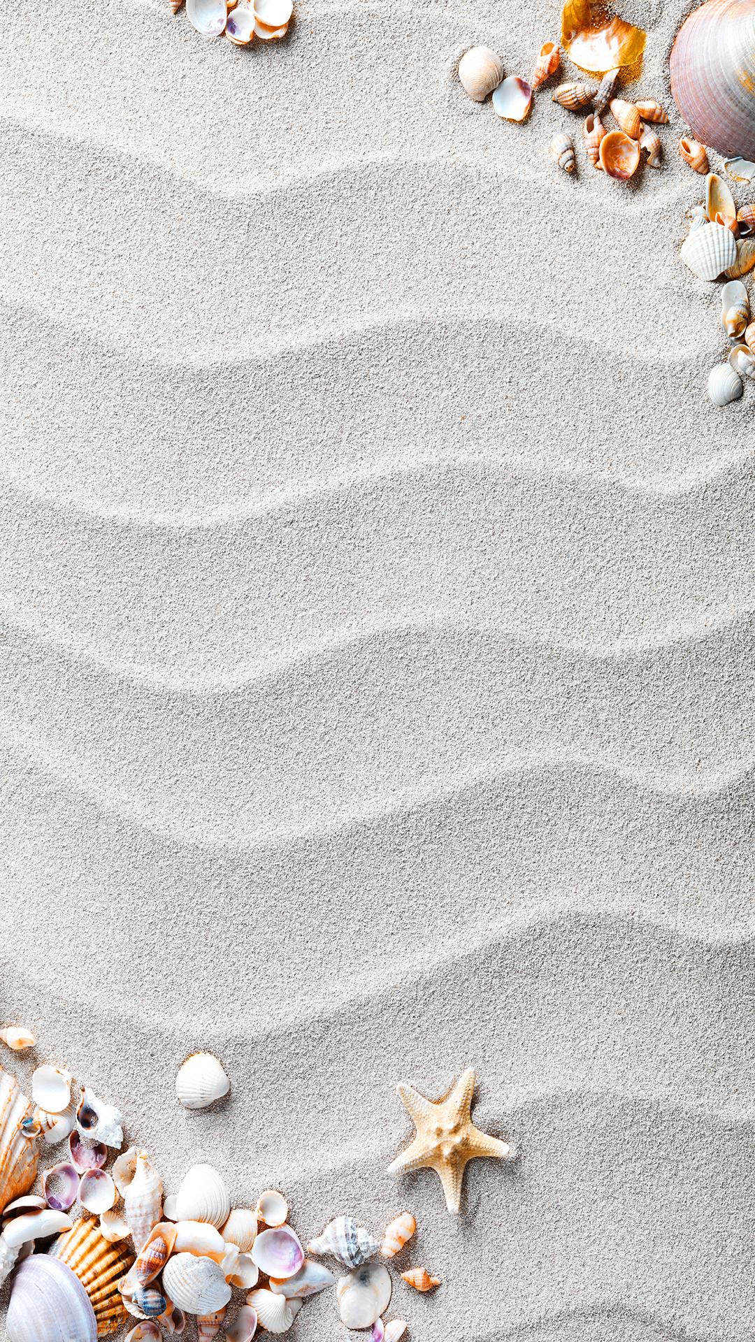 beach shells border h5 background material  beach  sand