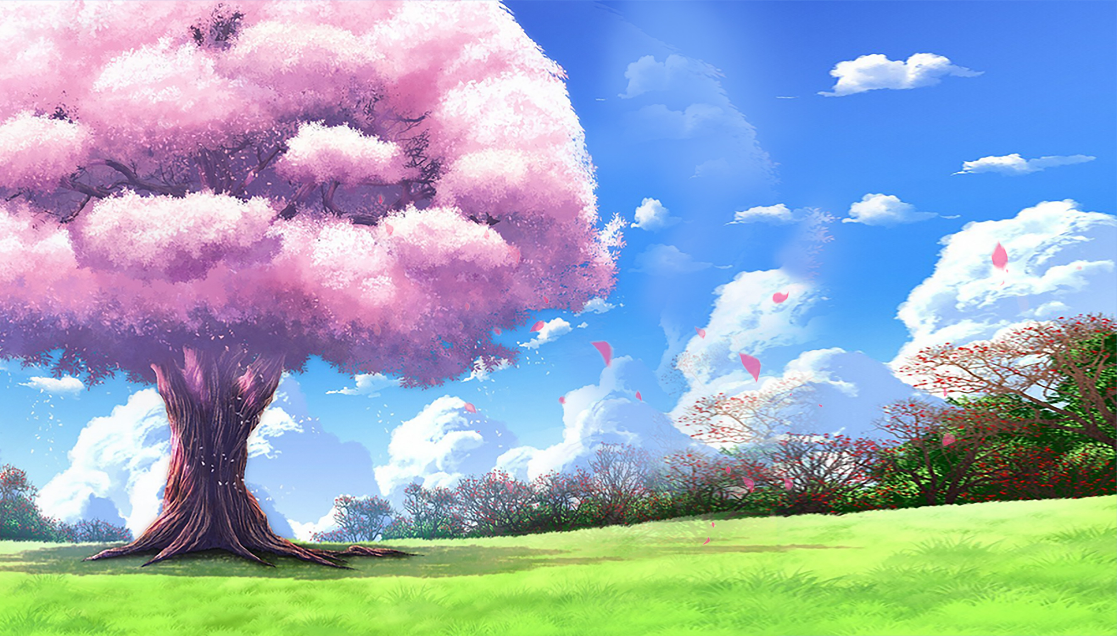 Beautiful Dream Sakura Tree Poster Background Psd