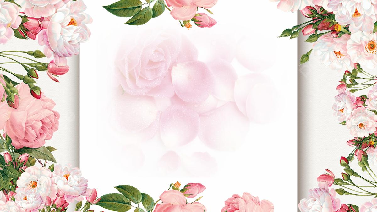 Romantic Wedding Rose Plant Floral Border Background, Pink Rose ...