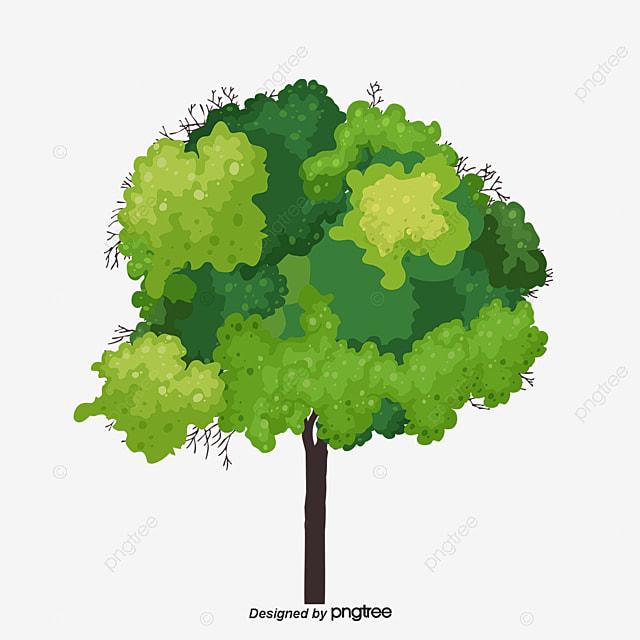 un arbre de l arbre bois les feuilles image png pour le