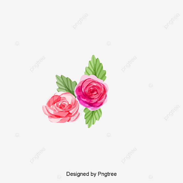 Hd Flowers Png Vector Psd And Clipart With Transparent