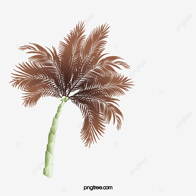 palm tree png www pixshark com images galleries with a palm leaf clip art watercolor palm leaf clip art watercolor