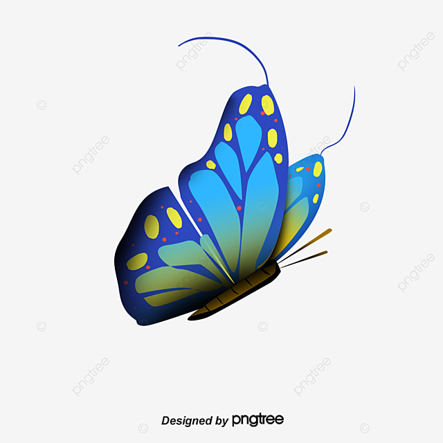 Bright Colorful Butterfly Cool Butterfly Dream Butterfly Clipart
