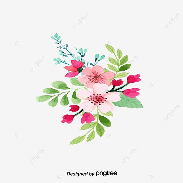 plantes  u00e0 fleurs plantes  u00e0 fleurs les fleurs les fleurs