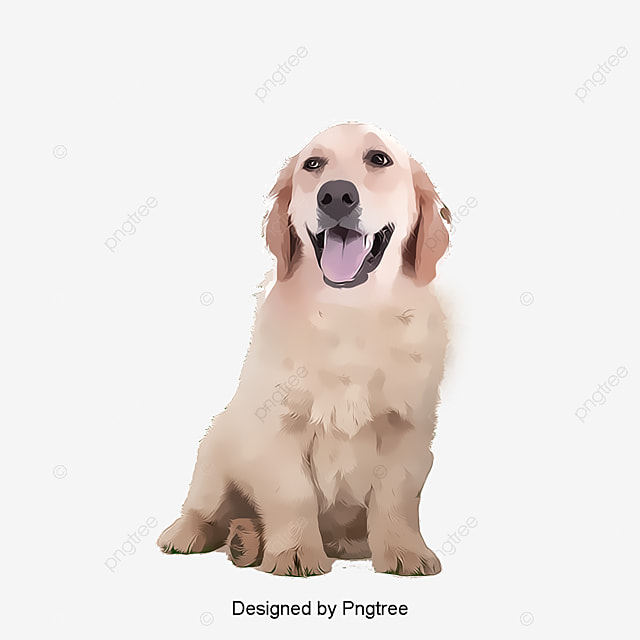 dog pattern dog golden dogs png and psd file for free download