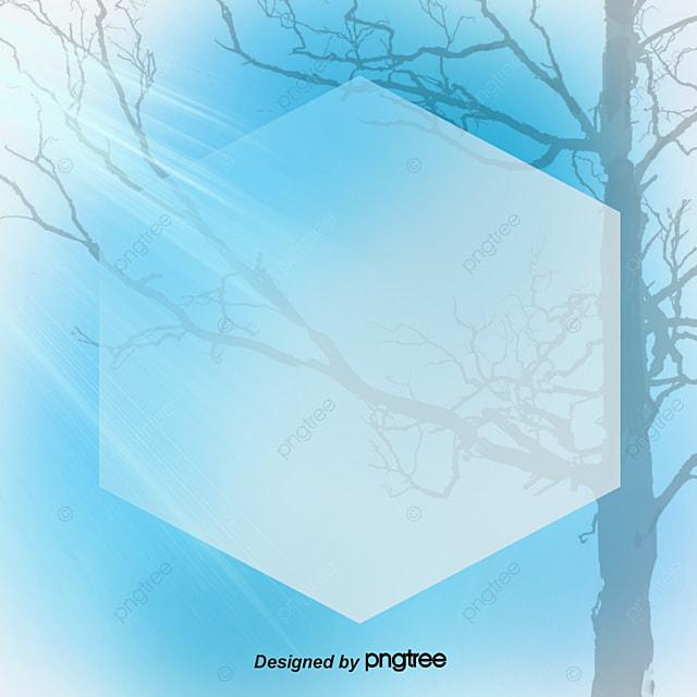 le cadre photo de l arbre lumi u00e8re nuage fichier png et psd